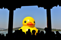 The famous rubber duck is exhibited at the Summer Palace Royalty Free Stock Image