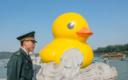 The famous rubber duck is exhibited at the Summer Palace Stock Photos