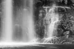 Famous Russel Falls closeup in black and white. Mount Field Nati Royalty Free Stock Photography