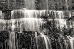 Famous Russel Falls closeup in black and white. Mount Field Nati Stock Image