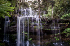 Famous Russell Falls in Mount Field National Park, Tasmania, Australia stock photos
