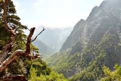 Famous Samaria Gorge, Crete. Greece Royalty Free Stock Photo