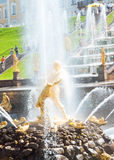 Famous Samson and Lion fountain in Peterhof Stock Photography