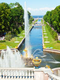 Famous Samson and Lion fountain in Peterhof Royalty Free Stock Images