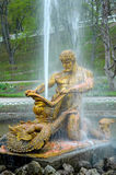 Famous Samson and the Lion fountain in Peterhof Palace Royalty Free Stock Photography