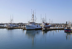 Famous San Diego Tuna fishing boats in San Diego Harbor Royalty Free Stock Photography