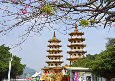 The famous scenic spot tower of dragon and tiger Royalty Free Stock Photos
