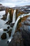 Famous Selfoss waterfall. Jokulsargljufur National Park, Iceland Stock Photos