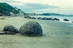 Famous spheric Moeraki Boulders at the coastline in New Zealand royalty free stock images