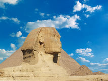 Famous sphinx. Famous great sphinx in giza , cairo , egypt Royalty Free Stock Photography