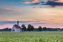 Famous St. Coloman church in beautiful morning with flower field in summer Royalty Free Stock Photo
