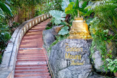 Famous stairs of the Golden Mount, Bangkok, Thailand. Famous stairs to the top of the mountain in the temple of the Golden Mount, Bangkok, Thailand. Soft focus Stock Image