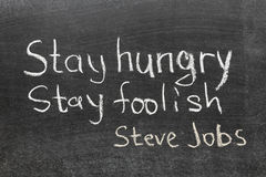Steve Jobs quote. Famous Steve Jobs quote - 'Stay hungry, stay foolish' handwritten on blackboard royalty free stock images
