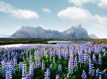 Famous Stokksnes mountains on Vestrahorn cape Stock Photo