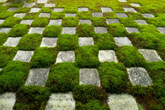 Famous Stone and Moss Garden. Stone and Moss form a famous pattern of squares at the zen gardens of Tofukuji in Kyoto, Japan royalty free stock photos