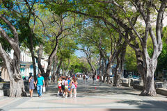 The famous street of Paseo del Prado in Old Havana Royalty Free Stock Photo