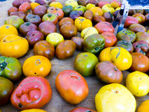 Famous Sunday Hollywood Farmers Market Vegetable Stand. Selling beautiful heirloom tomatoes direct from a local farmer in Southern California Royalty Free Stock Photography