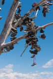 The famous tamarisk shoe tree near Amboy on Route 66 Stock Images
