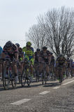 Famous Tirreno Adriatico bycicle race Royalty Free Stock Photography