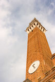 Famous Torre del Mangia Photo stock