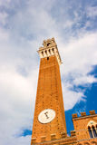 Famous Torre del Mangia Images stock