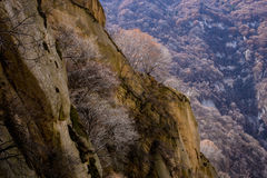 The famous tourist attractions in Shaanxi province China, Huashan mountain. Royalty Free Stock Image