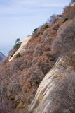 The famous tourist attractions in Shaanxi province China, Huashan mountain. Stock Image