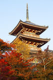 The famous  tower in the maples. In Japan Royalty Free Stock Images