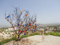 Famous decorated tree in historical Cappadocia, Turkey royalty free stock photo