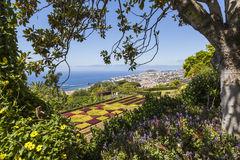 Famous Tropical Botanical Gardens in Funchal town, Madeira islan Stock Images