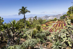 Famous Tropical Botanical Gardens in Funchal town, Madeira islan Stock Image