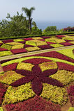 Famous Tropical Botanical Gardens in Funchal Stock Image