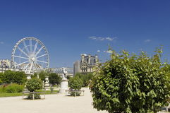 Famous Tuileries garden (Jardin des Tuileries). Beautiful and popular public garden located between the Louvre Museum and the royalty free stock image