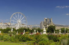 Famous Tuileries garden (Jardin des Tuileries). Beautiful and popular public garden located between the Louvre Museum and the royalty free stock images