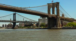 Brooklyn and Manhattan bridges royalty free stock image