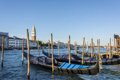 Famous Venice gondolas and San Marco bell tower Stock Images