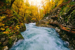 The famous Vintgar Canyon with wooden pats,Bled,Triglav,Slovenia,Europe Royalty Free Stock Photos