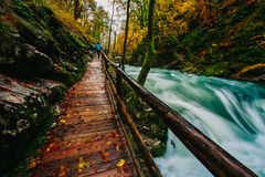 The famous Vintgar gorge Canyon with wooden pats,Bled,Triglav,Slovenia,Europe Stock Photo