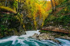 The famous Vintgar gorge Canyon with wooden pats,Bled,Triglav,Slovenia,Europe Stock Images