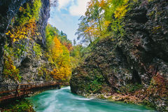 The famous Vintgar gorge Canyon with wooden pats,Bled,Triglav,Slovenia,Europe Royalty Free Stock Image