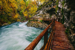 The famous Vintgar gorge Canyon with wooden pats Stock Photo