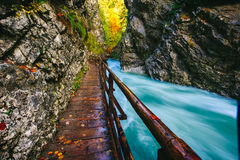 The famous Vintgar gorge Canyon with wooden pats Stock Photography