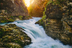 The famous Vintgar gorge Canyon with wooden pats Royalty Free Stock Photo