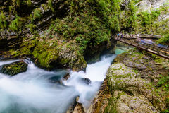 The famous Vintgar gorge Canyon with wooden pats in the natural Park Triglav. Stock Photo