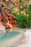 Famous Virgin River Royalty Free Stock Photography