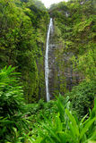 Famous Waimoku Falls waterfall at the head of the Pipiwai Trail, above Seven Sacred Pools on the Road to Hana. Maui, Hawaii. Famous Waimoku Falls waterfall at royalty free stock photography