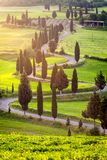 Famous winding road near Monticchiello in Tuscany, Italy. Winding road with many curves and cypresses alongside in morning light. Near small town Monticchiello stock photography
