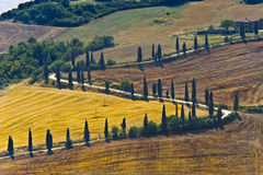 Famous winding road in Val d'Orcia Royalty Free Stock Images