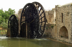 Famous wooden waterwheels in Hama in Syria Royalty Free Stock Photo