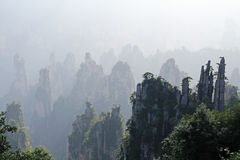 Famous Zhangjiajie National Forest Park in Hunan Province, China. China. Famous Zhangjiajie National Forest Park in Hunan Province Royalty Free Stock Image